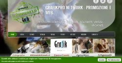 network grafikpro